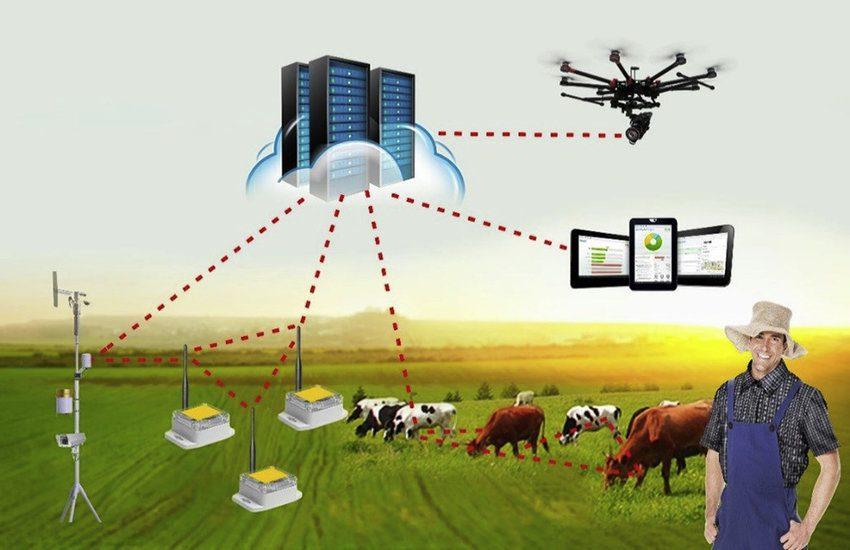 công nghệ chăn nuôi